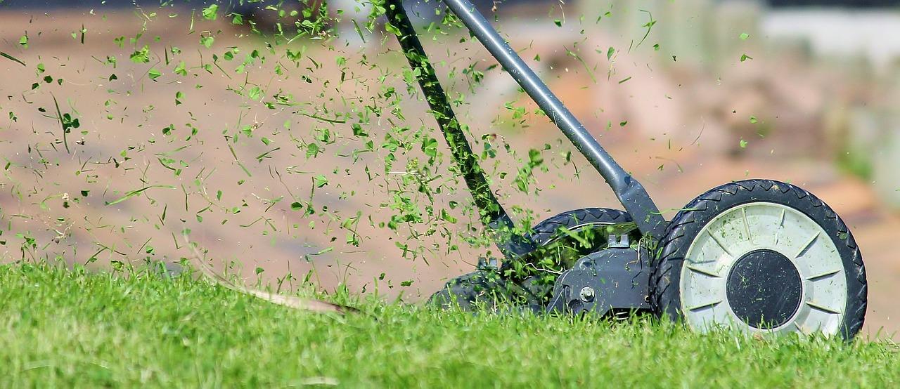 Elektronarzędzia dla ogrodników – wejdź na wyższy poziom wtajemniczenia