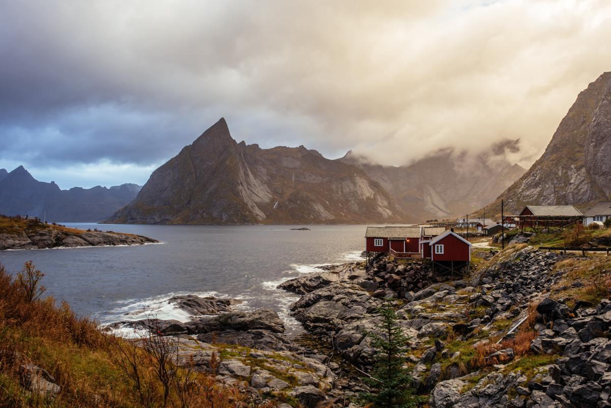 Skandynawski ogród – czym się charakteryzuje?