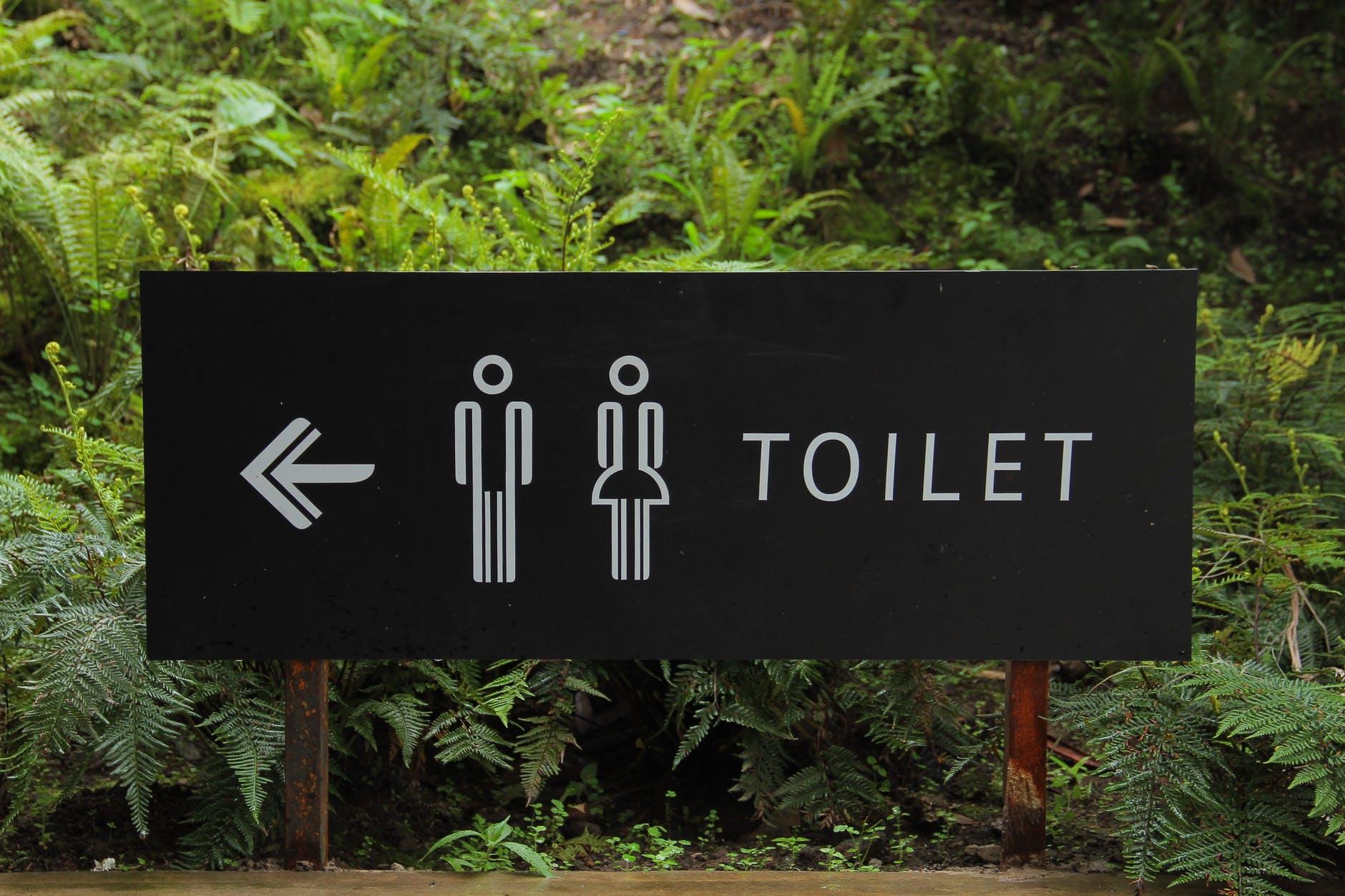 Czy wynajem toalet to dobre rozwiązanie?